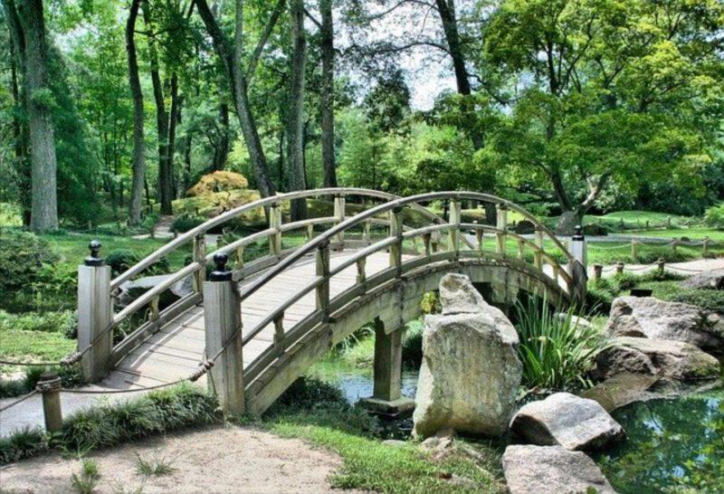 Projekt a koncepcja ogrodu